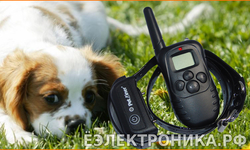 Axsel DS PET998DB1 (WT738N1/N2) водонепроницаемый